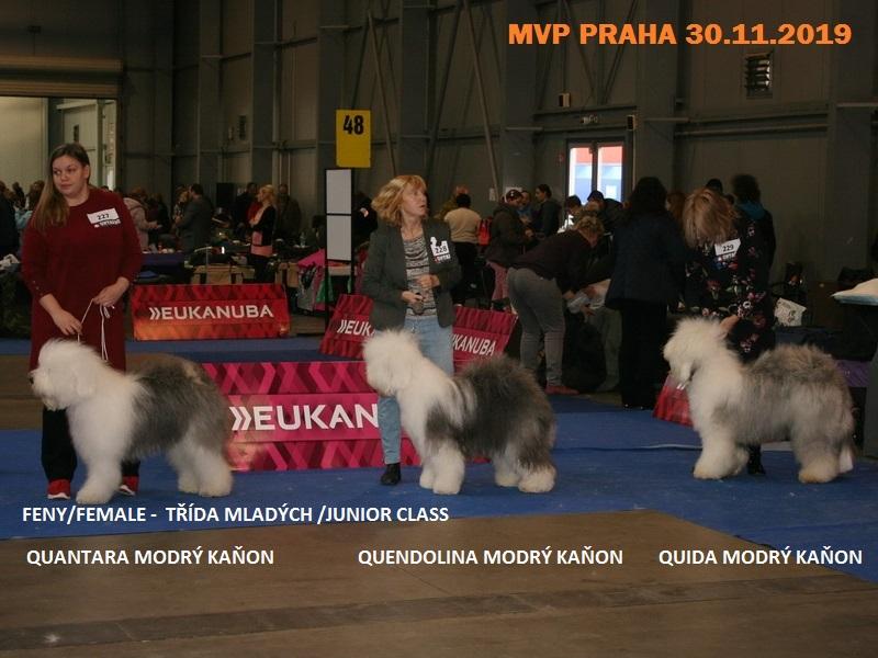 2019-mvp-praha-6C22BC5E2-1792-D172-C8A5-39FA3011E8B4.jpg